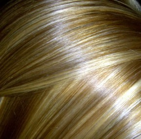 LOWLIGHTED_BLONDE_HAIR